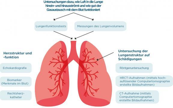 Liste Lungenuntersuchungen