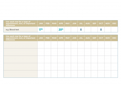 Medical planning chart template with example